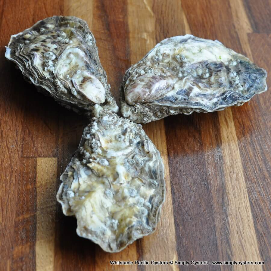 Whitstable Oysters Selection Box