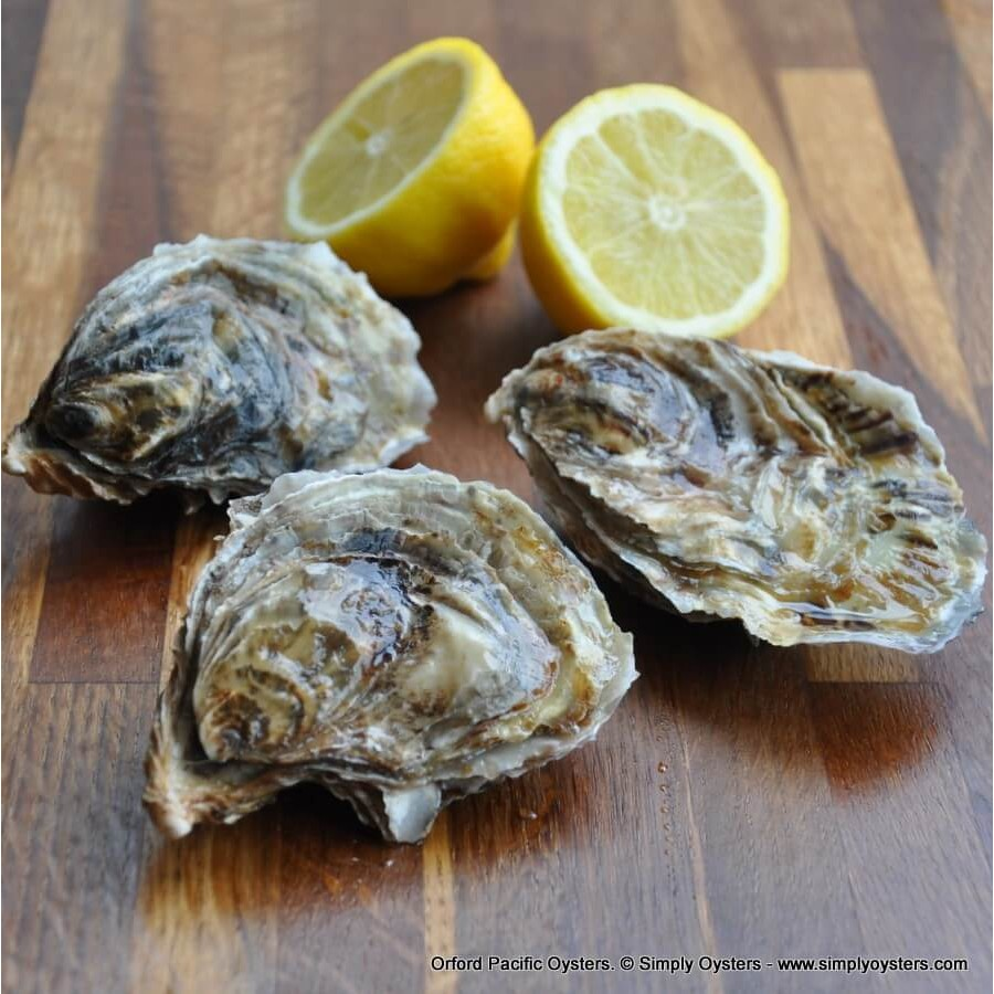 Orford Pacific Oysters (M-L)