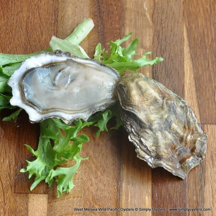 West Mersea Wild Pacific Oysters (M-L)