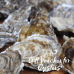 Gift Voucher for Oysters