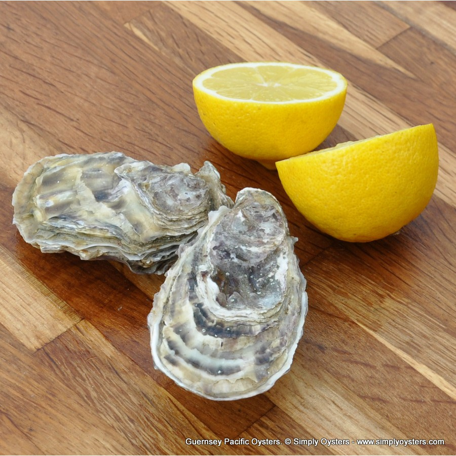 Guernsey Pacific Oysters (M)