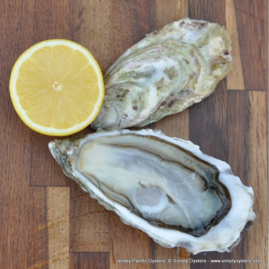 Oyster Selection Box