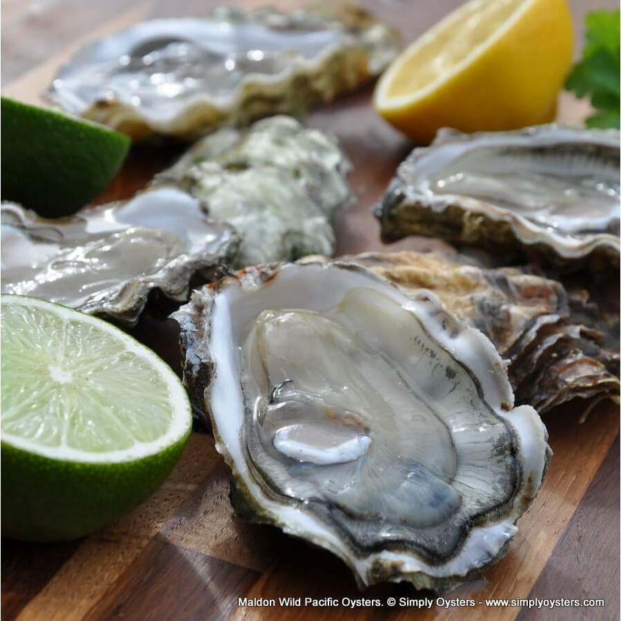Maldon Wild Pacific Oysters (M-L)