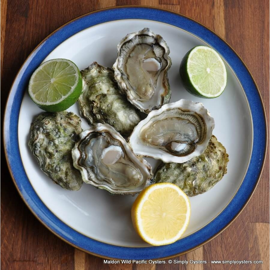 Maldon Oysters Selection Box