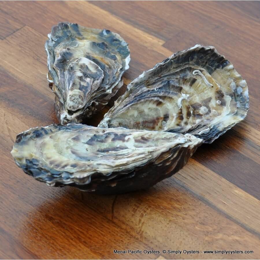 Menai Pacific Oysters (S-M)