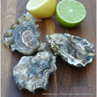 Poole Pacific Oysters (S-L)