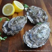 Port Navas Wild Pacific Oysters (S-L)