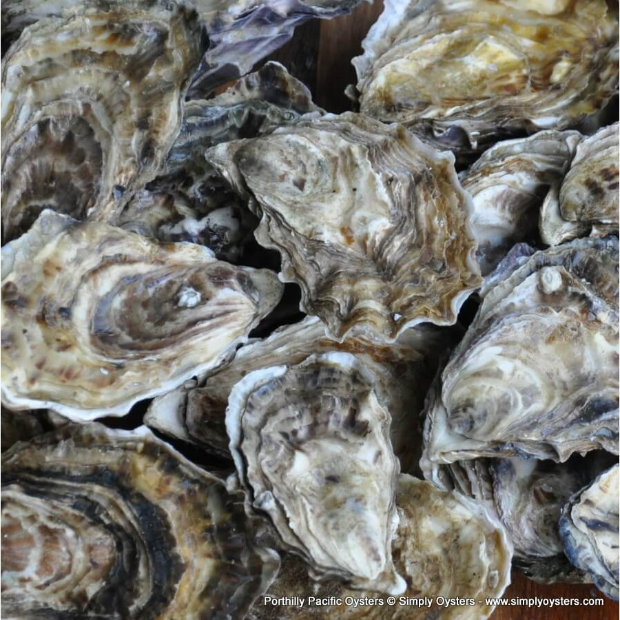 Porthilly Oysters & Shellfish Selection Box