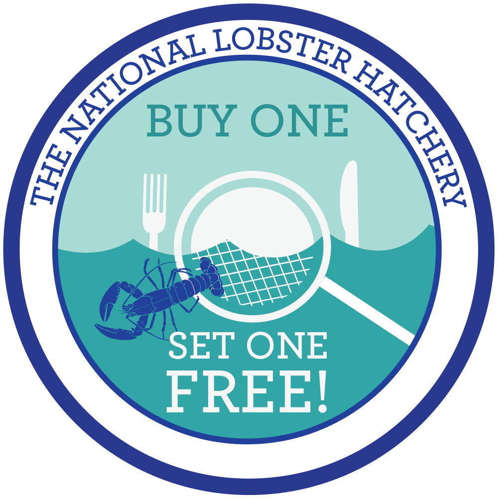 National Lobster Hatchery and Simply Oysters