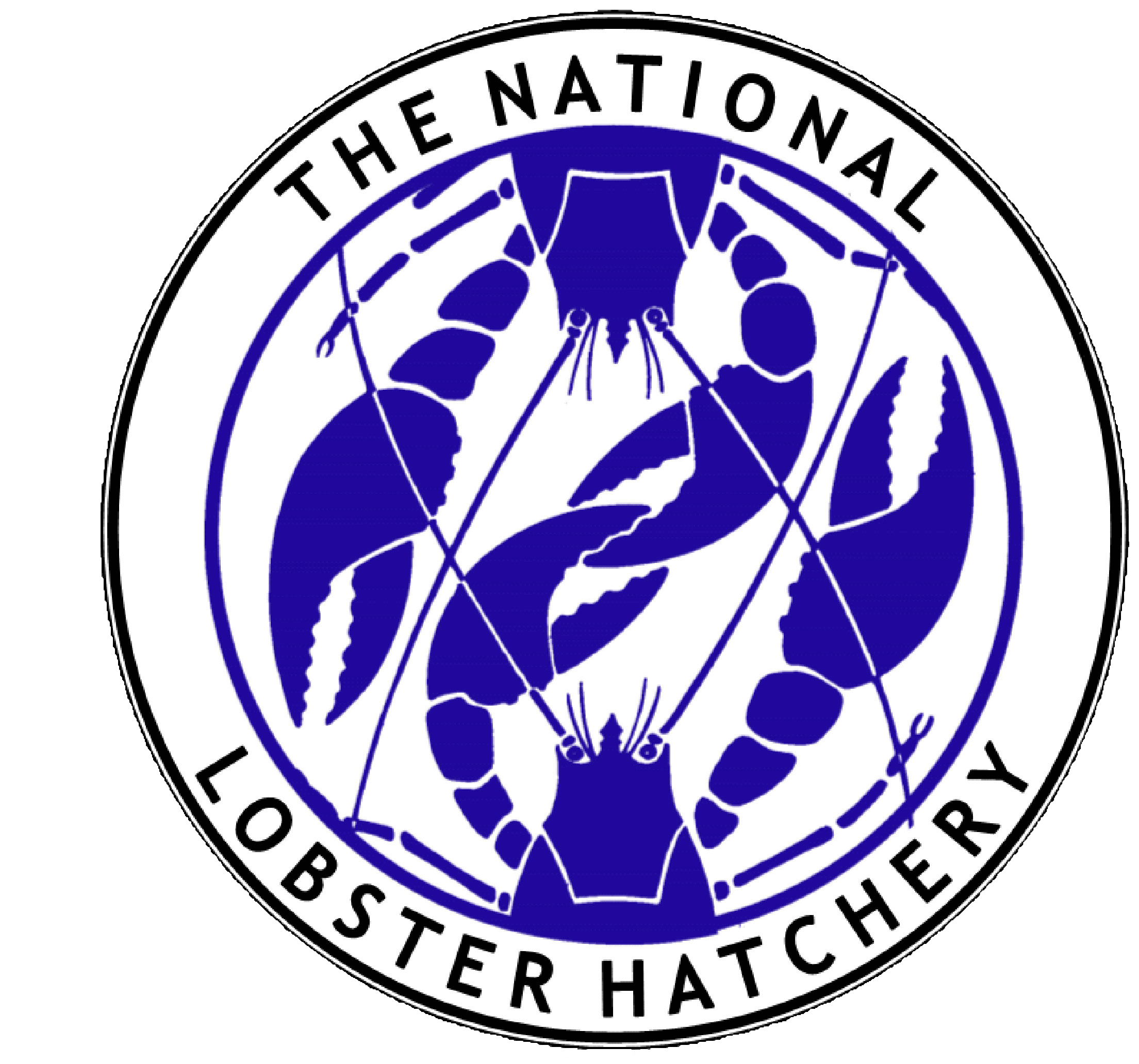 The National Lobster Hatchery and Simply Oysters